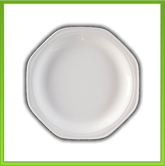 Dinner Plate for Hire