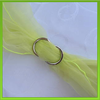 Neon Chair Sash (tie back)